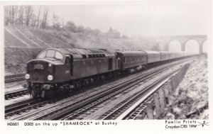 Shamrock Train at Bushey D305 Railway Station Postcard