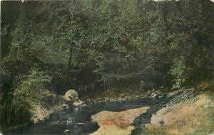 Stuart Iowa~Deer Creek~Fish in this Stream for Hickory Shad~1910~Post Card