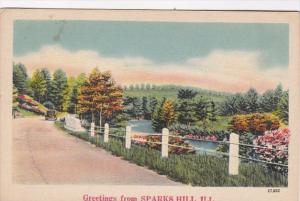 Illinois Greetings From Sparks Hill