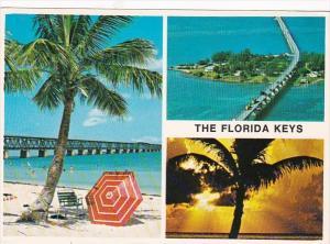 Florida Keys Seven Mile Bridge and Pigeon Key