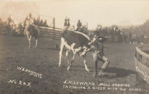 PENDLETON , Oregon, 1900-10s ; Rodeo , L.H. Lewman bulldogging