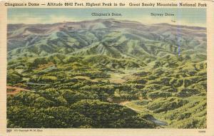 Clingman's Dome Skyway Dr Great Smoky Mountains National Park Texas Postcard