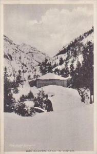 Colorado Box Canyon Park In Winter Albertype