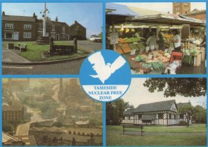 Tameside Manchester Anti Nuclear Bomb Peace Free Zone Postcard