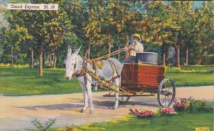 Donkey and Wagon Ozark Express