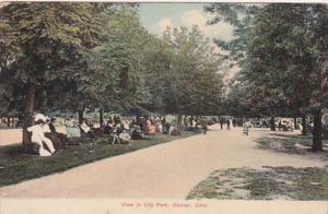 Colorado Denver View In City Park 1909