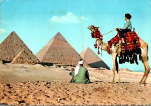 Egypt The Pyramids Of Giza