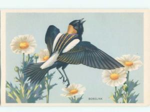 Pre-1980 BOBOLINK BIRD AC7102
