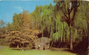Hot Springs Arkansas~De Soto Marker~Ladies Reading Inscription~1960s Postcard