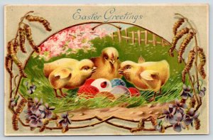 Easter~Three Chicks Study Lady Bug on Colored Eggs~Meadow Portal~Embossed~ZIM