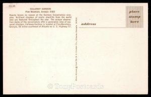 Callaway Gardens - Pine Mountain