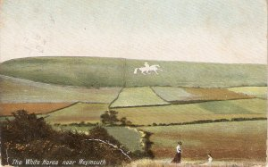 The White Horse near Weymouth Old vintage English postcard