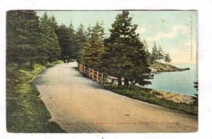 Point Pleasant Park, Halifax, Nova Scotia, Canada, PU-1906