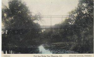 MAGAZINE , Arkansas , 00-10s ; Petit Jean Bridge
