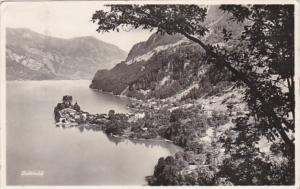 Switzerland Iseltwald Totalansicht Photo