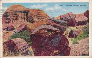 Arizona Petrified Forests 1927