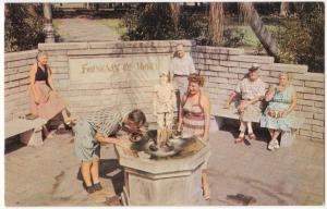 The Fountain of Youth, St. Petersburg, Florida, unused Postcard