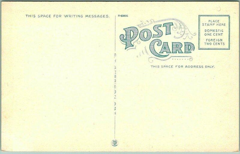 1910s Buffalo, New York Postcard Section of the NEW MALATOSIA ROOF Main & High