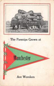 The Parsnips Grown at Manchester New Hampshire~ Are Wonders!~Exaggerated~1914