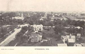 Stromsburg Nebraska Birdseye View Of City Antique Postcard K59645
