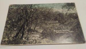 POSTCARD,ROUND GROVE,GREENE,LOUISIANA 1909  $10