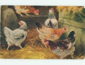 Divided-Back BIRDS SCENE Pretty Postcard AA8972