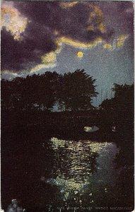 Willow Island Bridge Niagara Falls NY Vintage Postcard Standard View Card