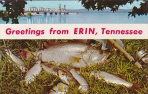 Greetings From Erin Tennessee