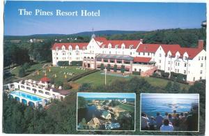 The Pines Resort Hotel, unused Postcard