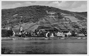 Assmannshausen Germany~Shorefront City Skyline~Patchwork Farms Up Hill~1930 RPPC