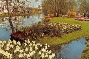 Netherlands Keukenhof Lisse-Holland flowers fleurs blumen