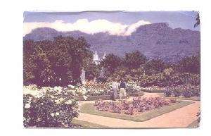 Botanical Gadens, Cape Town, Table Mountain, South Africa