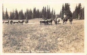 Real Photo Postcard Packing Lumber near Packwood, Washington~130617