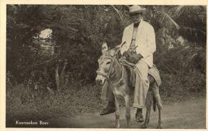 curacao, Koenoekoe Kunuku Farmer on Donkey (1950s) Postcard