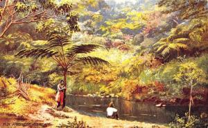 Fiji Islands A Forest Stream Raphael Tuck Series Number 7601 Postcard