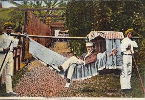 MADEIRA PORTUGAL MAN RELAXES IN HAMMOCK CARRIED LOCAL MEN PHOTO POSTCARD 1900s