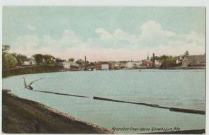 ME Showkegan Maine~Kennebec River Kennebec River SHORE VIEW c1908
