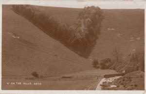 Forest Wood Name Letter V On The Hills Antique Real Photo Postcard