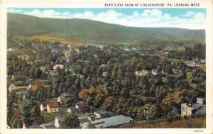 West Coudersport Pennsylvania Bird's Eye View~Street-Houses-Town Bldgs~1920s PC