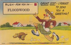 New York Great Scot Rush For You In Floodwood