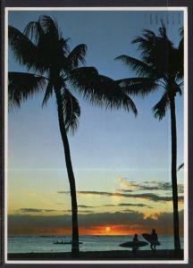 Coastal  Sunset BIN