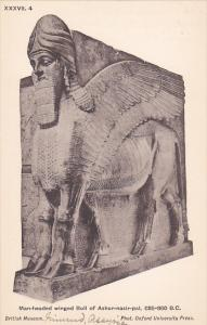 Palace of Assur wall panel , Iraq , 00-10s : Man-headed winged Bull of Ashur-...