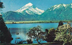 Argentina Lake Region Near Bariloche