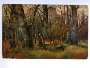 170343 Autumn HUNT Deer Vintage Colorful Military Post PC