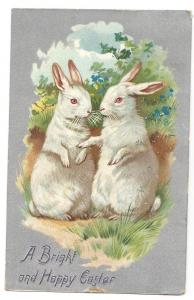 Tuck Easter Postcard White Rabbits Silver Background 1910