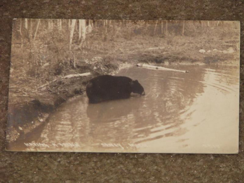 RPPC, Having a Drink, Seney, Michigan, used vintage card
