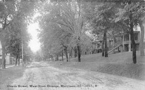 Morrison Illinois~Dirt Grove St, West From Orange~Homes on Hillside~B&W c1908
