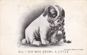 Sad puppy in a muzzle , All I did was growl a little, 00-10s