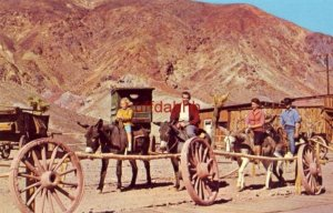THE BURRO RIDE OF CALICO GHOST TOWN BARSTOW, CA photo by Louis & Virginia Kay