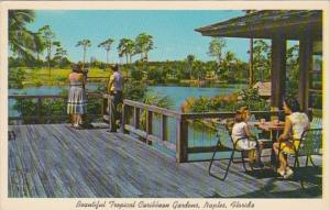 Florida Naples Scene At Tropical Caribbean Gardens From The Pavilion 1963